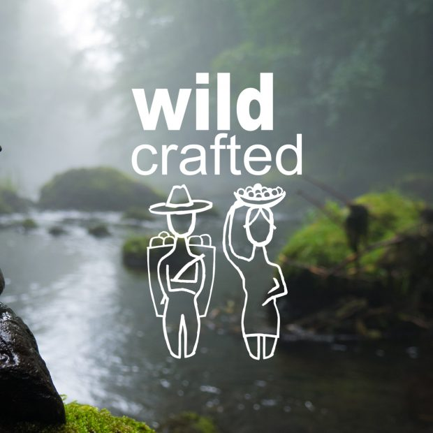 Wild Crafted